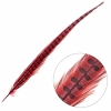 Ringneck Pheasant Tail 18-20in (3pcs) Dyed Red